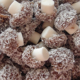 Coconut Mushrooms 100g Gift Bag